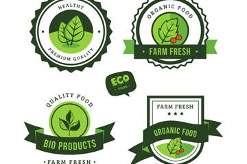 4款创意绿色有机食品标签矢量图
