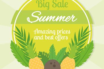 夏季菠萝和椰子装饰促销标签矢量图