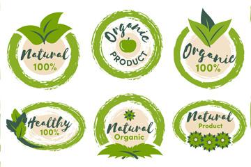 6款绿色有机标签设计矢量图