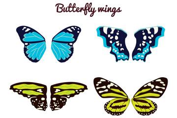 6款彩色花纹蝴蝶翅膀矢量素材