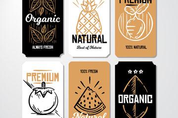 6款手绘有机食物卡片矢量素材