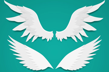 3款白色质感翅膀齐乐娱乐手机网页版矢量图
