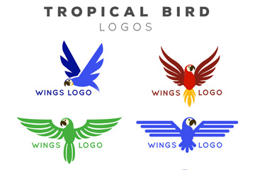 6款彩色热带鸟标志矢量图