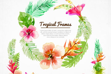 水彩绘夏威夷花环和花边矢量素材