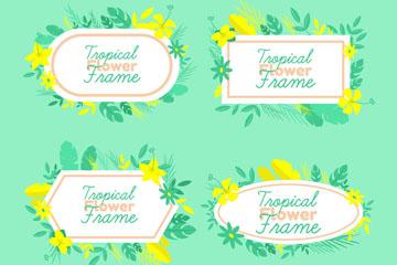4款彩色热带花卉框架矢量图