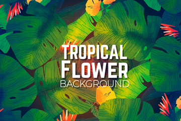 彩绘热带花卉背景矢量素材