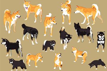 16款彩绘日本四国犬和柴犬矢量素材