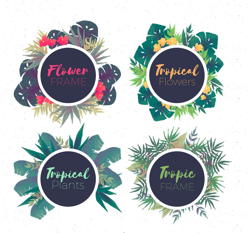 ai彩绘,含jpg预览图,关键字:树叶标题,扶桑花,棕榈,技巧,热带花卉平面设计格式树叶图片