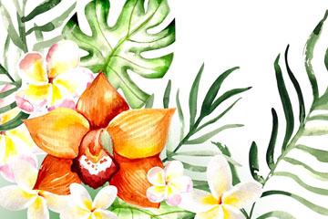 水彩绘蝴蝶兰鸡蛋花和棕榈树叶矢量图