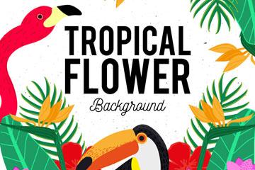彩色热带花鸟边框矢量素材