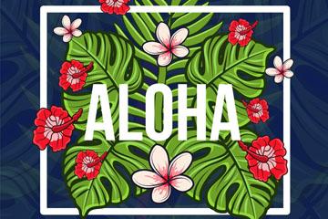 彩色夏威夷热带花卉树叶矢量亚虎娱乐pt
