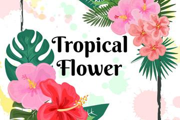 彩色热带花卉框架设计矢量素材