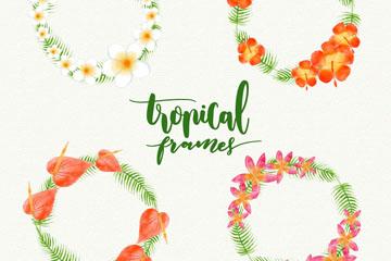 4款彩色热带花卉花环矢量素材