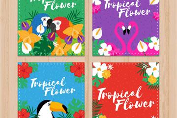 4款彩色热带花鸟卡片矢量素材