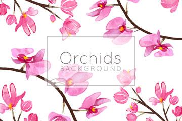 粉色兰花花枝背景矢量素材