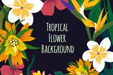 彩绘热带花卉边框矢量素材