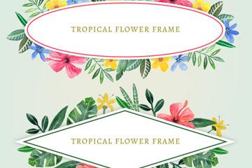 2款彩绘热带花卉框架矢量素材