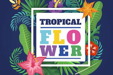 彩色热带花卉框架矢量素材