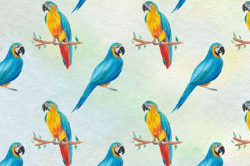 彩绘蓝喉金刚鹦鹉无缝背景矢量素