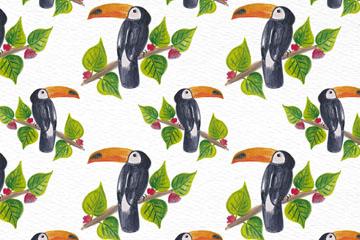 彩绘树枝上的托哥巨嘴鸟无缝背景