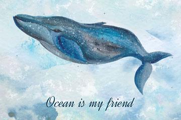彩绘海里的布氏鲸矢量素材