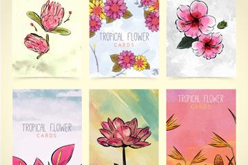 6款手绘热带花卉卡片矢量素材