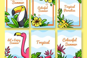6款彩绘热带花鸟卡片矢量素材