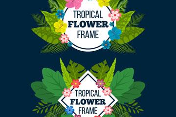 2款创意热带花草框架矢量素材