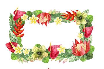 2款彩色手绘热带花卉框架矢量素