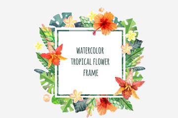 2款水彩绘热带花卉框架矢量素材