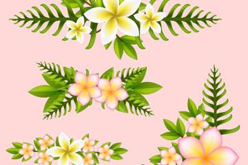4款白色鸡蛋花和棕榈树叶花边矢量图