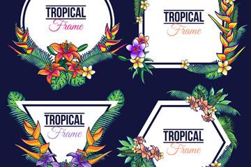 4款彩绘热带花草框架矢量素材