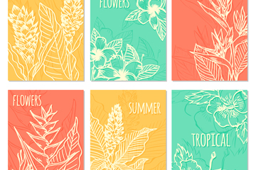 6款创意白色夏季热带植物卡片矢量素材