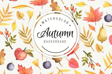 彩绘秋季叶子和水果背景矢量素材