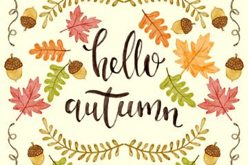 彩绘秋季橡子和树叶矢量素材
