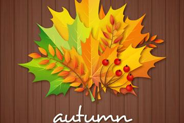 彩色秋季树叶花束矢量素材