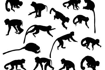 15款创意猴子剪影矢量素材