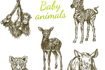 5款手绘幼年野生动物矢量素材
