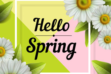 创意白色春季菊花框架矢量素材