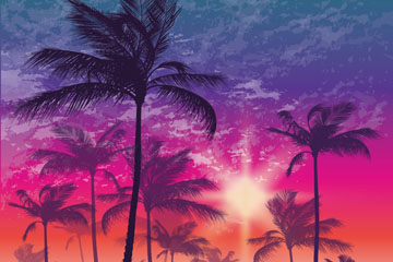 梦幻夕阳下的棕榈树矢量素材