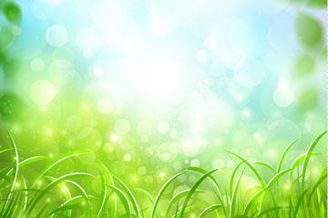 春季绿色草地和阳光风景矢量素材