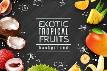精美热带水果框架矢量素材