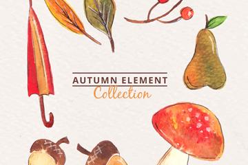 8款彩绘秋季元素组合圆环矢量图