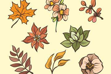 8款彩绘秋季花卉和叶子矢量图