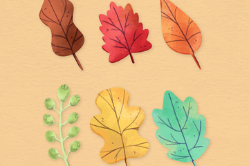 6款彩绘叶子设计矢量素材