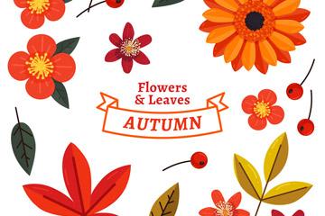 16款彩色秋季花卉和叶子矢量图