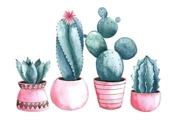 4款水彩绘仙人掌盆栽矢量素材
