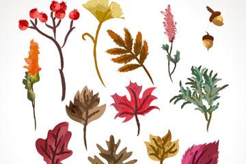 16款彩绘秋季植物设计矢量图