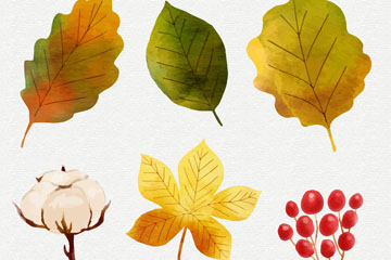 6款水彩绘秋季植物矢量素材