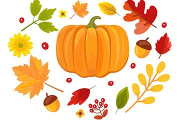 14款彩色秋季植物设计矢量素材